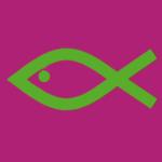 Pinker Fisch
